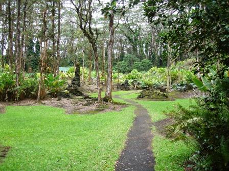lava tree park path Puna